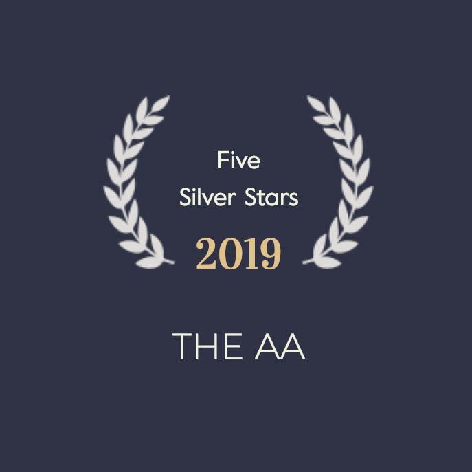 AA 5 Silver Stars